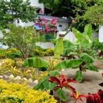 alrededores-el-jardin
