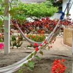 hamacas-flores-el-jardin