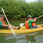 kayak-en-estero